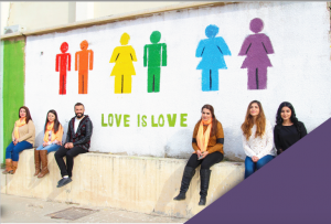 Conceptualising Sexualities in the MENA Region